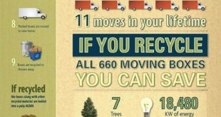 green-your-move-with-5-eco-friendly-tips