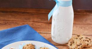 , Crunchy Peanut Butter Cookie Balls, #Bizwhiznetwork.com Innovation ΛI