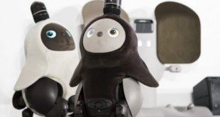 groove-x-unveils-the-lovot-family-robot-1083978870-5c32342da3cfe.jpg