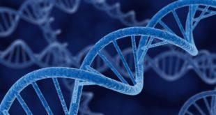 0d19f_course_genetics-640x353