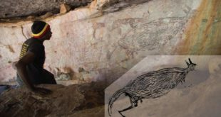 australias-oldest-known-rock-painting-is-a-kangaroo