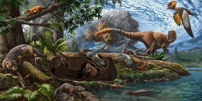 , Cretaceous Mammal, #Bizwhiznetwork.com Innovation ΛI