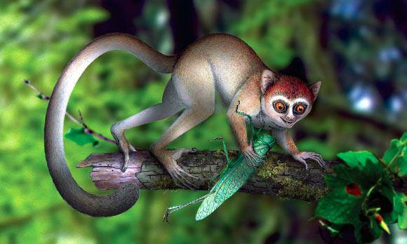 , Early Eocene Primate, #Bizwhiznetwork.com Innovation ΛI